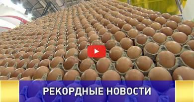 Пирамида из Ярославских яиц попала в книгу Гиннесса  ВИДЕО: